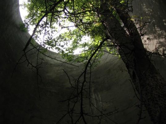 silo-tree-4-537x402